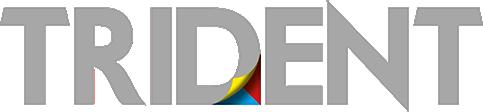 logo_trident_negativo.png